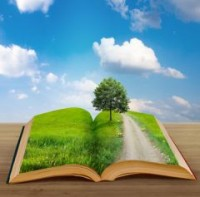 Summertime Good Reads in Psychology  Mental Health