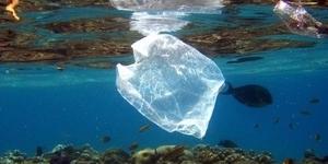 Riesiges Müllproblem in den Weltmeeren