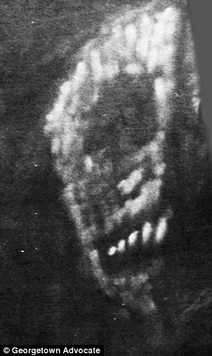 Terrifying: The large black velvet wall covering in Wolcott's boyhood room was painted with a skeletal face that seemed to stare at the viewer from the depths behind the wall